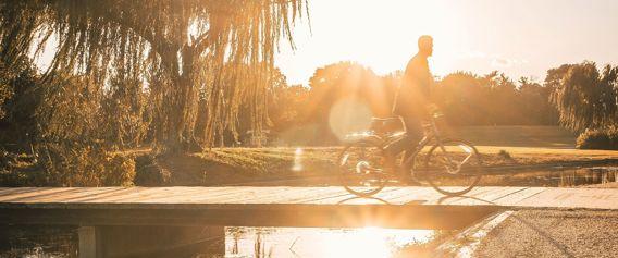 Sykkeltur i solen blant trær