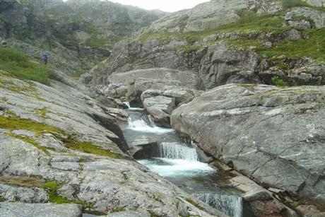 fakta om sogn og fjordane dogging i norge